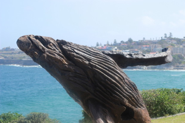Sculptures by the Sea (45)
