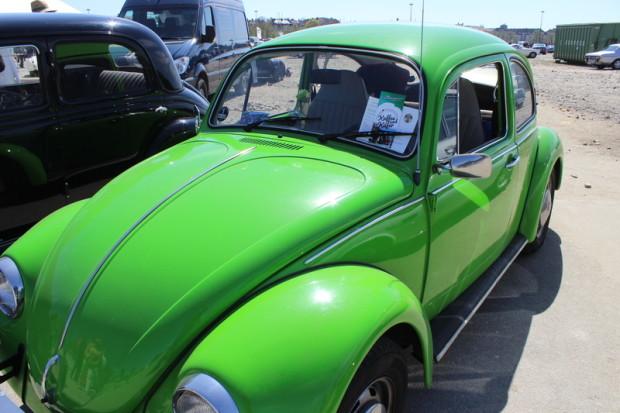 Käfer in Grün